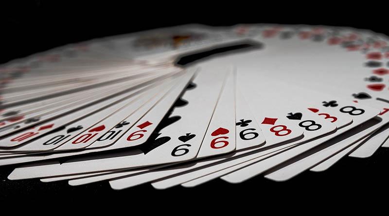 churchill and card deck koloda kart