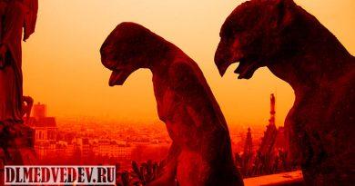 Химеры Собора Парижской Богоматери фото 1