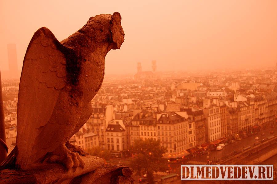 Химеры Собора Парижской Богоматери фото 2