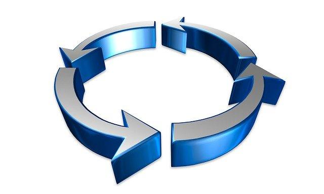 Определение стадии жизненного цикла организации Дмитрий Львович Медведев